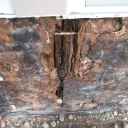 EXTERIOR WATER DAMAGE REPAIR (3).JPG