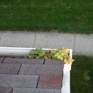 GUTTER CLEANING (6).JPG